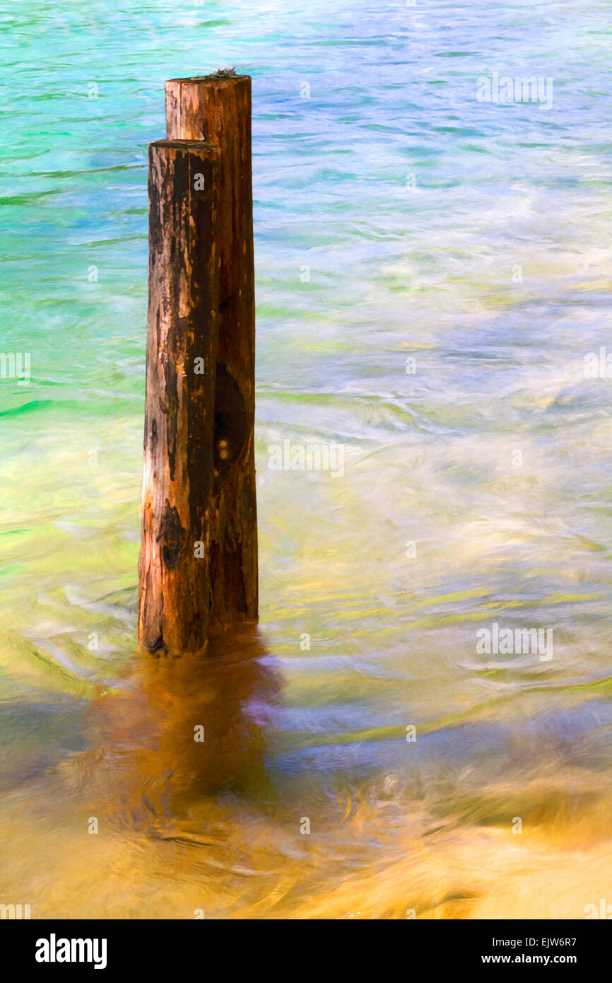 Painterly effect of tree trunk posts in dappled water - Stock Image