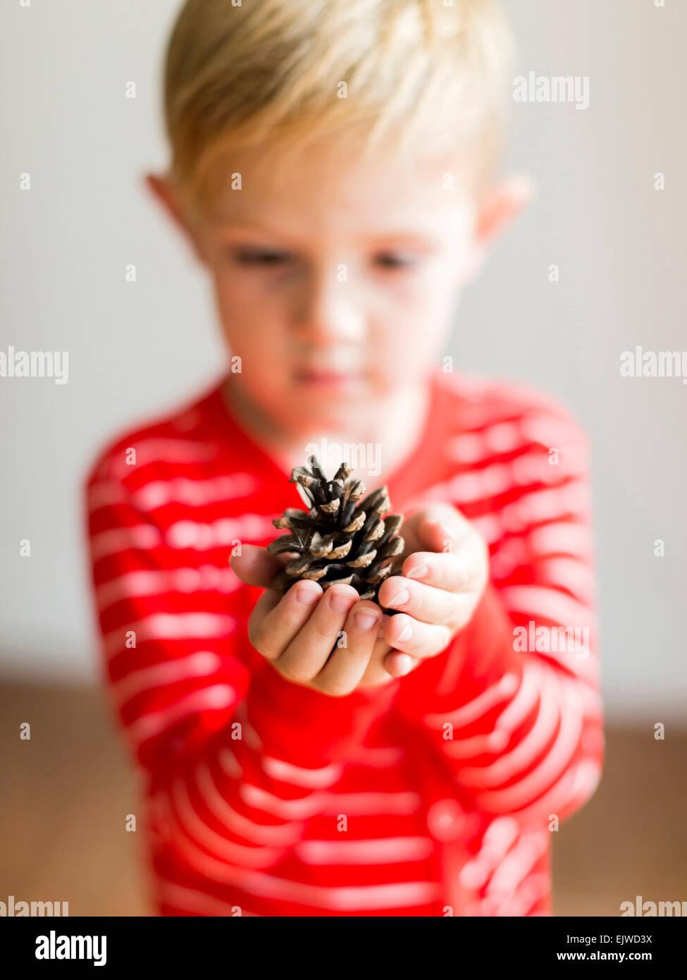 Boy (2-3) holding pine cone - Stock Image