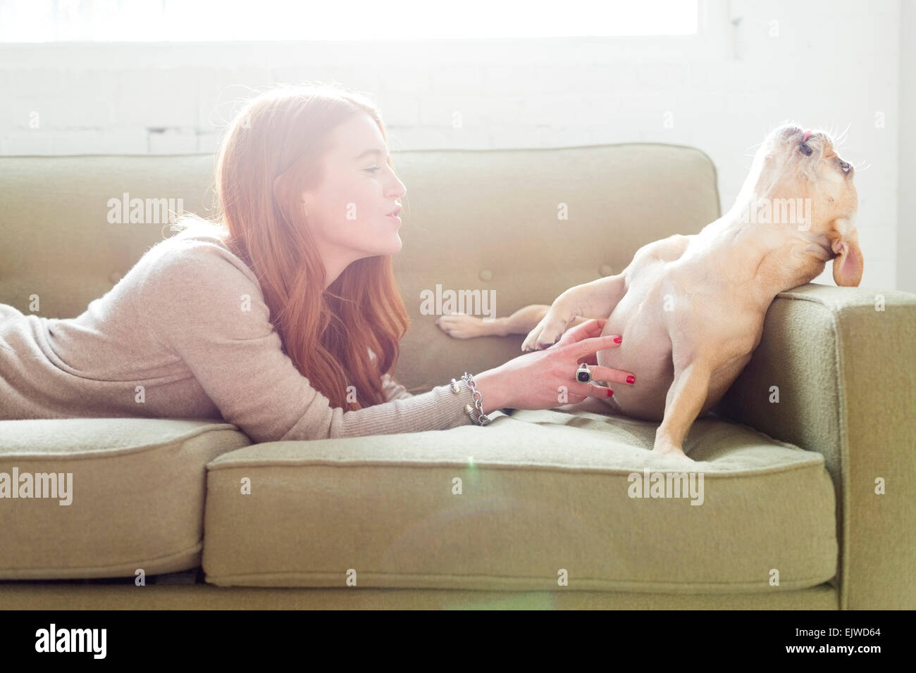 Woman lying on sofa stroking pug - Stock Image