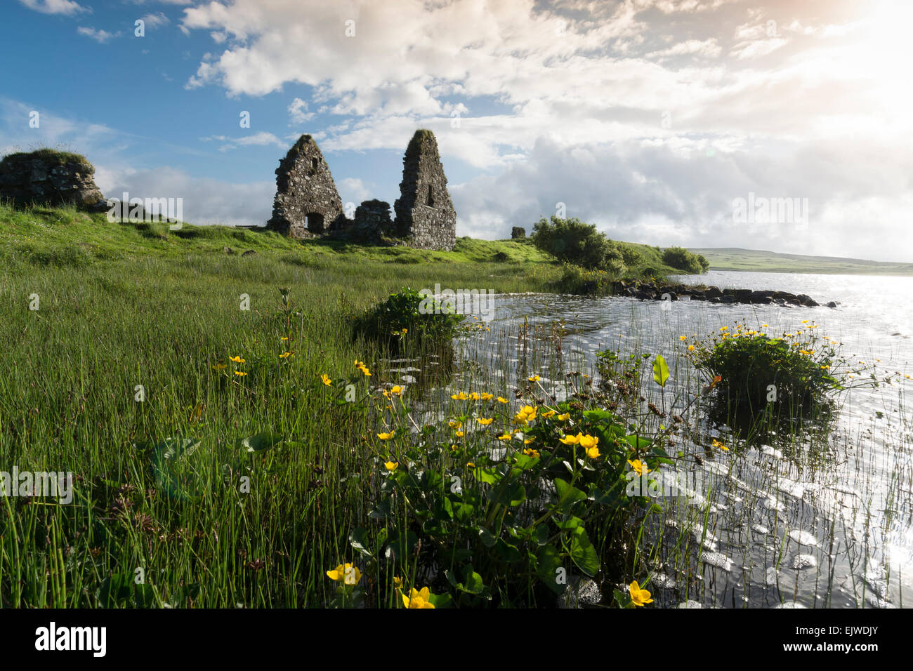 finlaggan ancient ruins where lord of the isles had seat - Stock Image