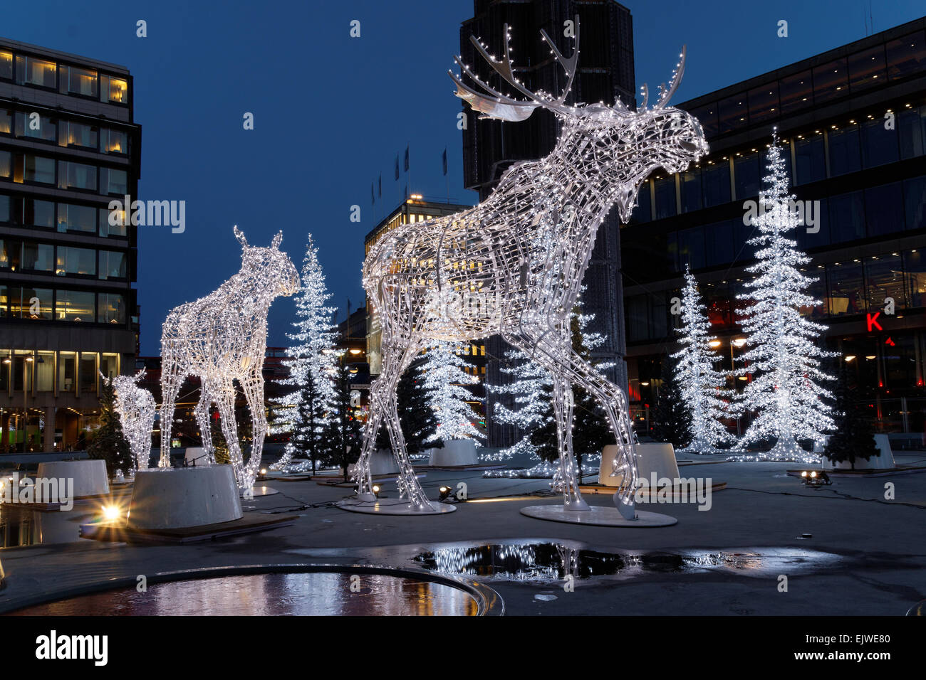 christmas moose decoration made of light in central stockholm stock image