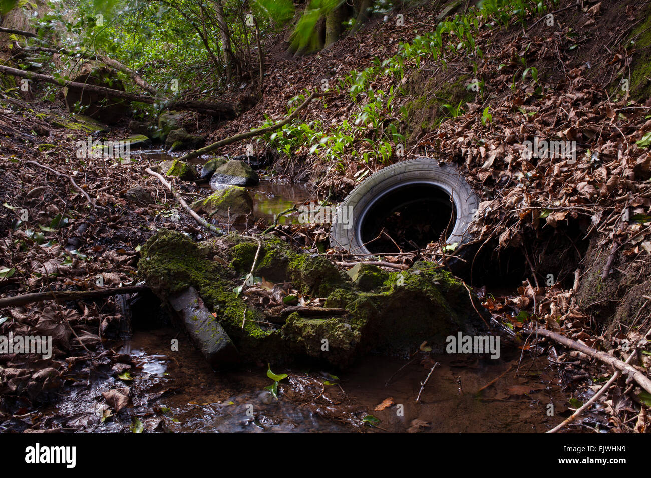Rubbish and waste dumped in a woodland stream. - Stock Image