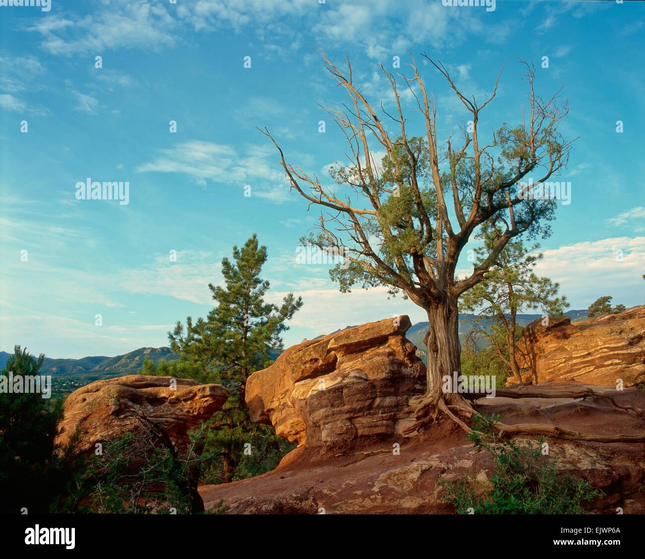 Garden of the Gods, Colorado Springs, CO - Stock Image