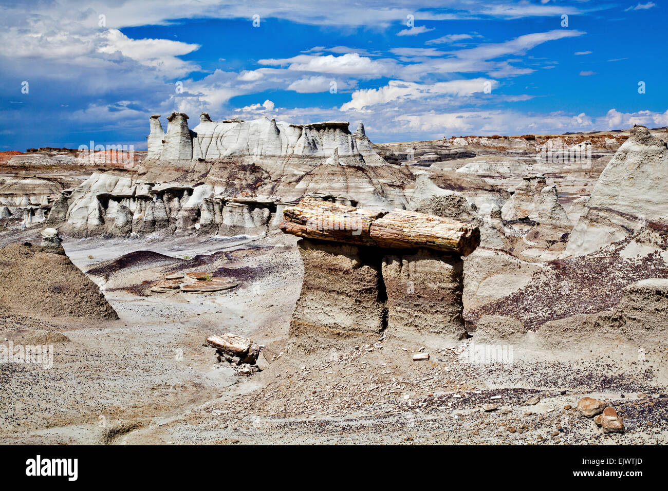 The Bisti De Na Zin Wilderness Area near Farmington, New Mexico, is a wilderness area filled with colorful earthforms - Stock Image