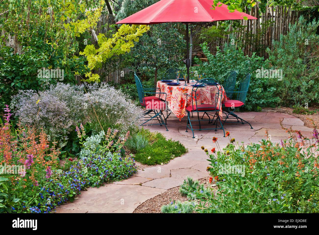 Holly backyard