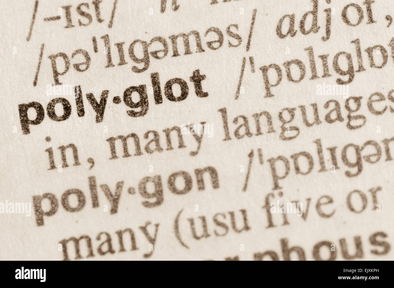 Definition of word polyglot in dictionary - Stock Image