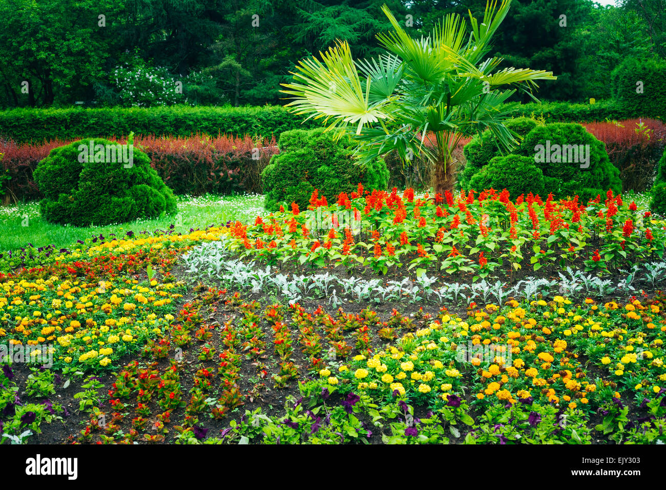 Flowerbed, Small Green Trees And Cuted Bushes In Garden. Beautiful Summer Park. Landscaping. Garden Design Stock Photo