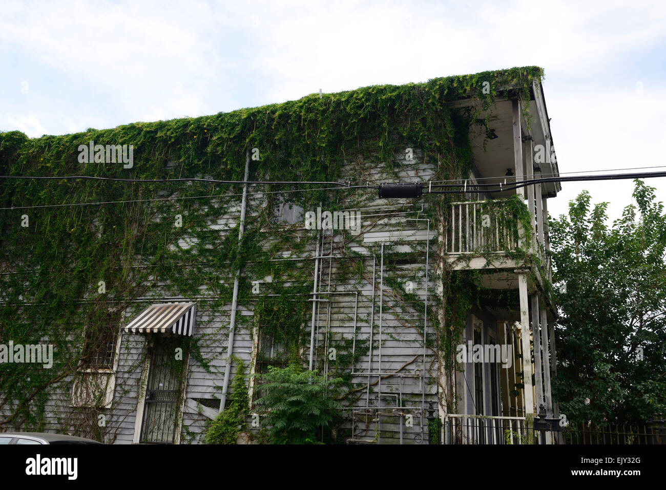 creeper cover covered house derelict delinquent decrepit property abandon abandoned properties RM USA - Stock Image