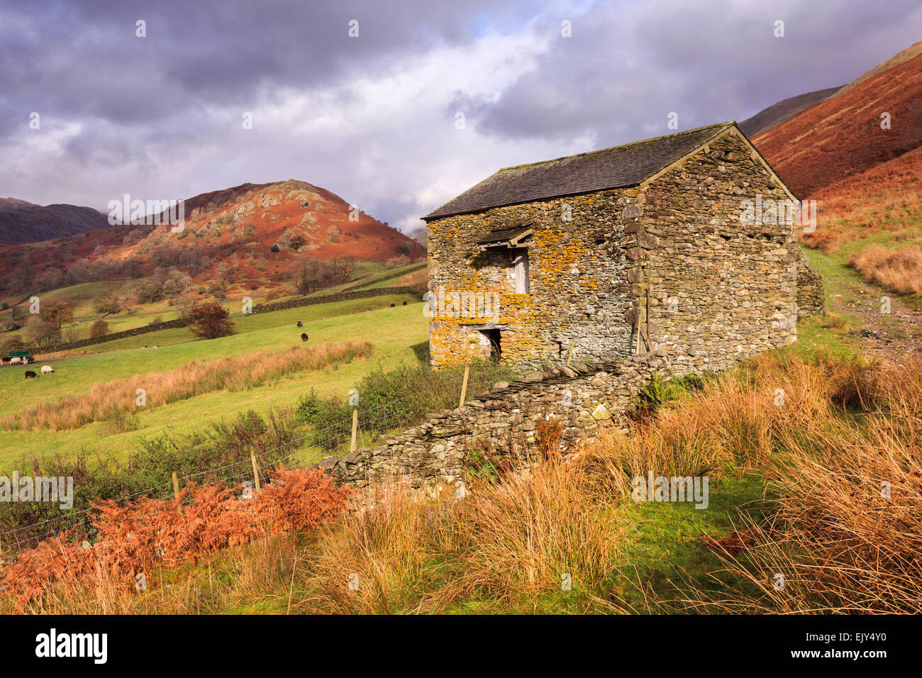 A barn in the Troutbeck Valley in the Lake District National Park, captured with the Tongue in the distance. - Stock Image