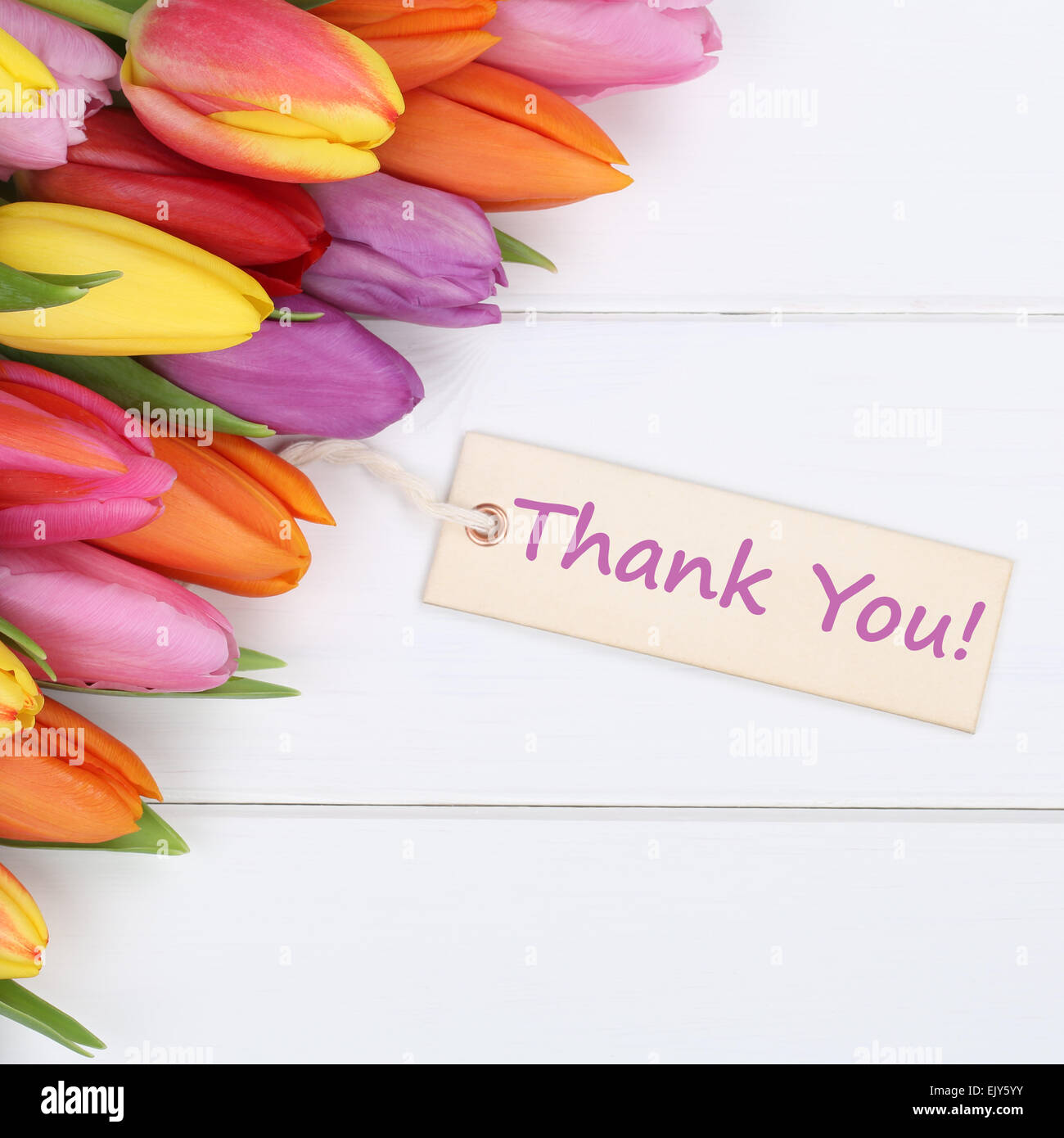 the words thank you with tulips flowers as a gift stock photo