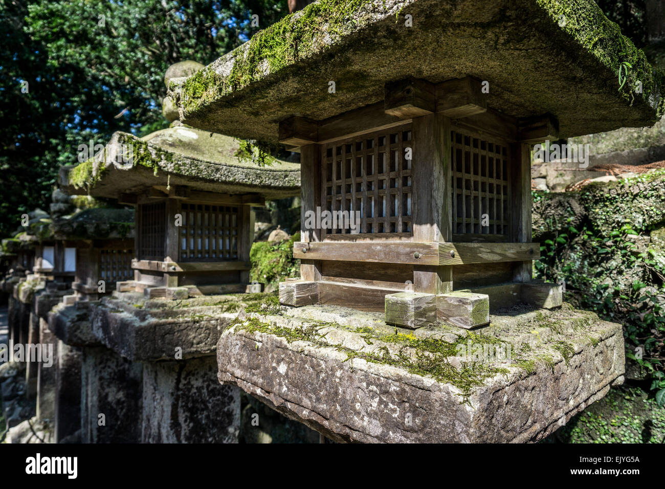 Close up view of several ancient Japanese stone lanterns in the forest near Kasuga Grand Shrine, Nara, Japan - Stock Image