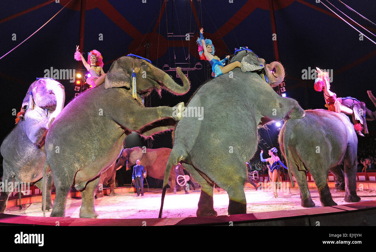 Munich, Germany. 92th Apr, 2015. Artistes perform with the legendary elephants of Circus Krone during the world - Stock Image