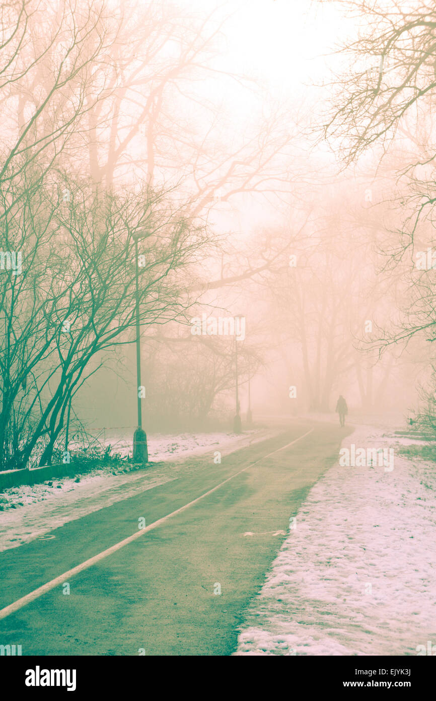 woman walking away on a street in a foggy winter morning - Stock Image