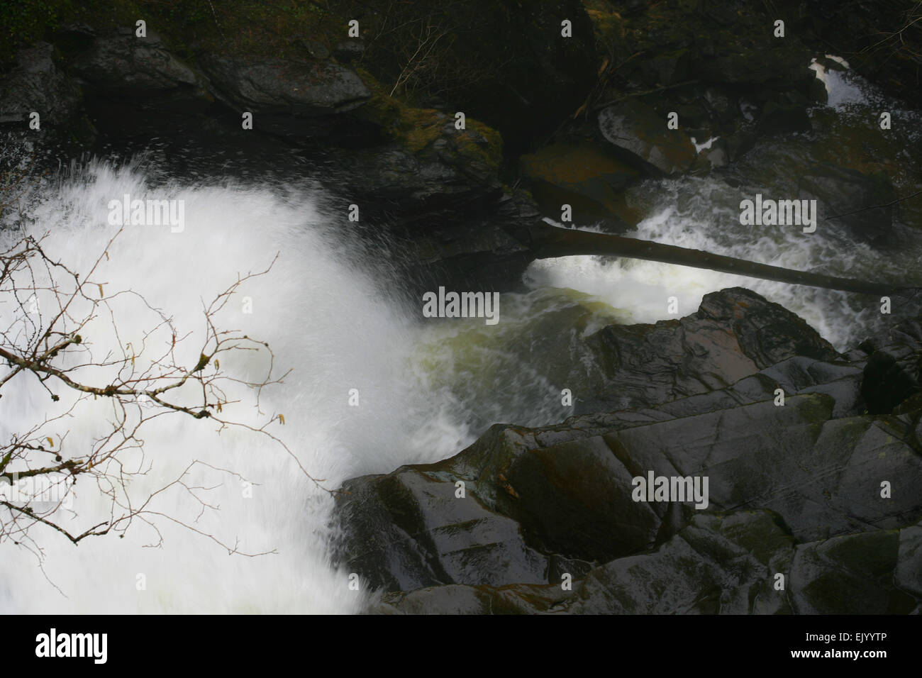 The explosive force of the falls on the Birks of Aberfeldy - Stock Image