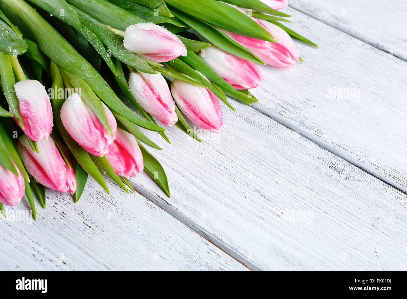 bouquet of spring tulips on boards, flowers - Stock Image