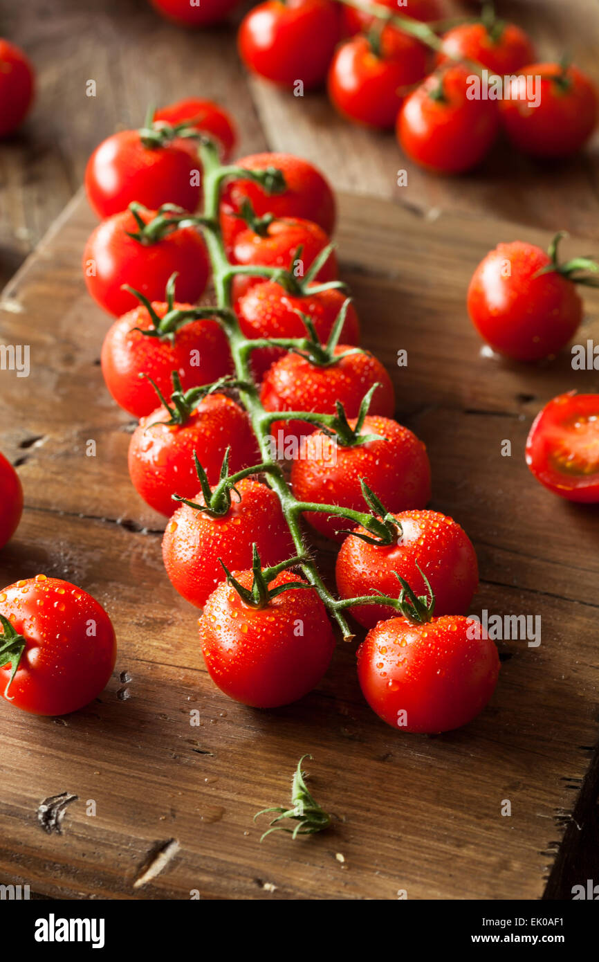 Raw Organic Red Cherry Tomatoes on the Vine - Stock Image