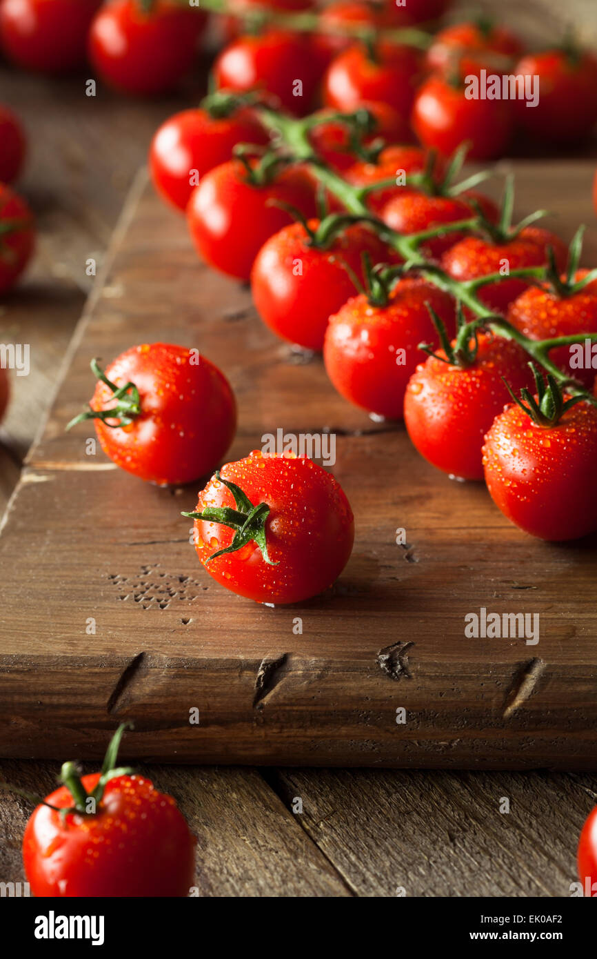 Raw Organic Red Cherry Tomatoes on the Vine Stock Photo