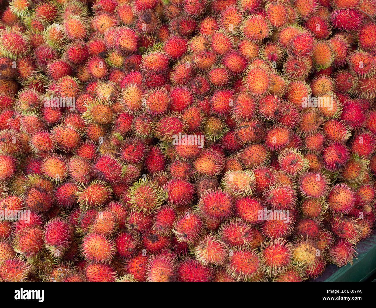 Mamon chino fruit in a Costa Rican market - Stock Image