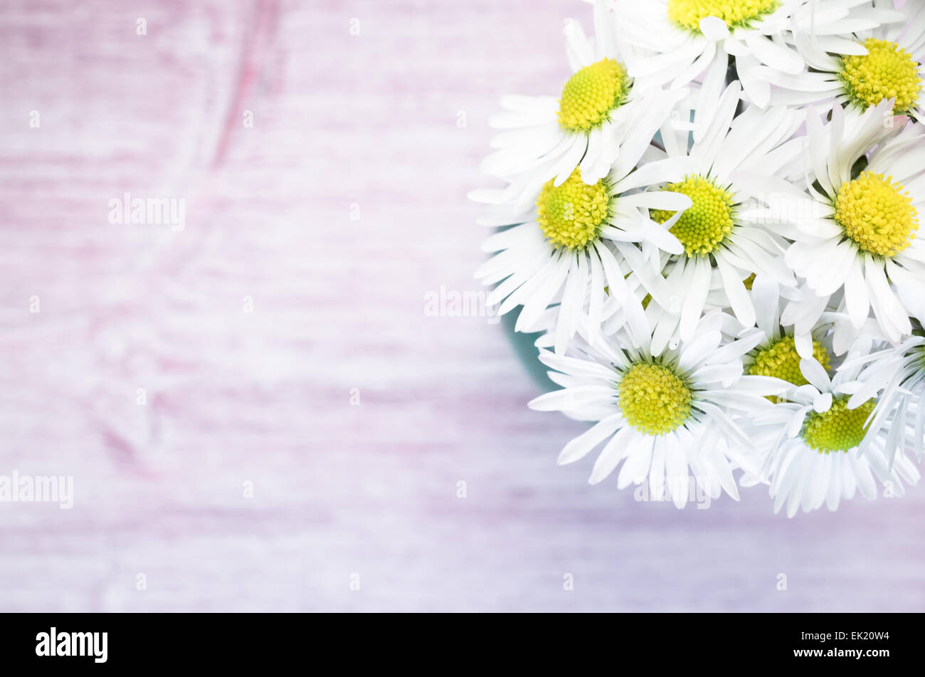 daisies flowers bouquet on a light pastel wood background Stock ...