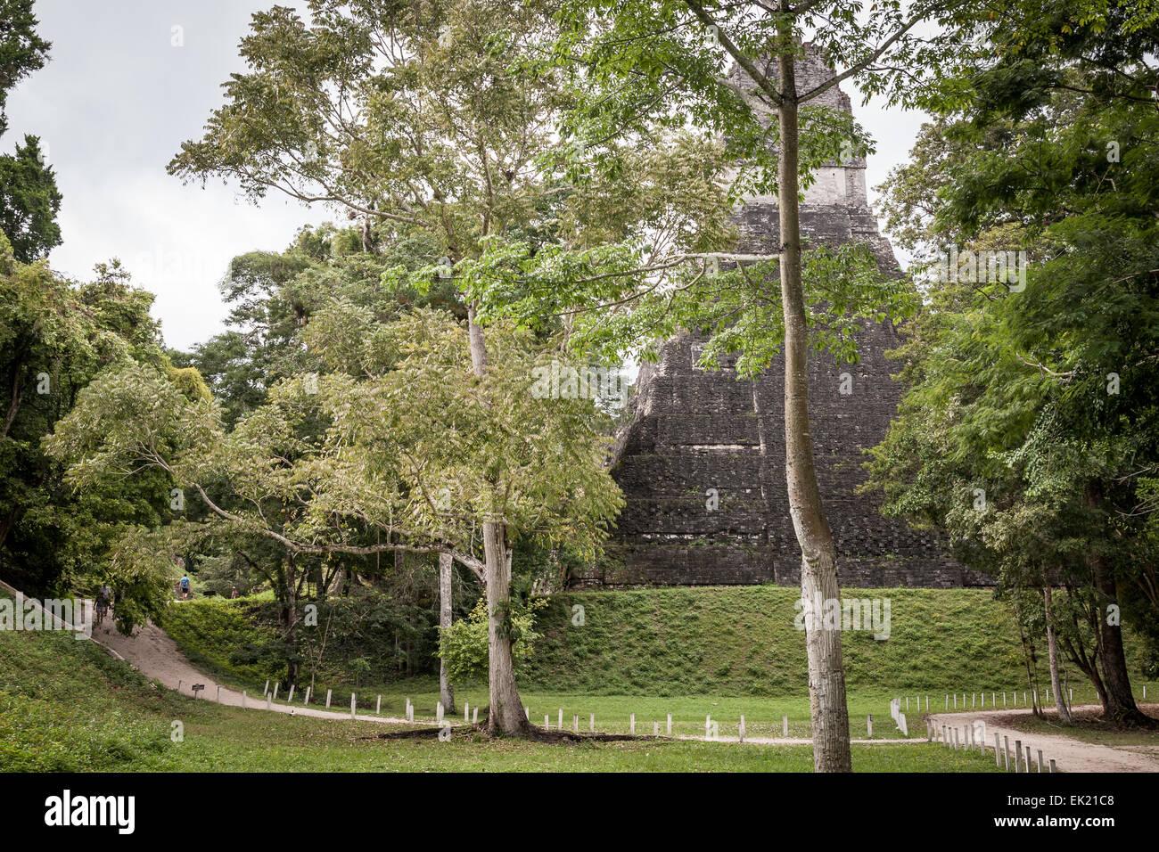 Vew of back of Jaguar Temple,Tikal, Guatemala - Stock Image