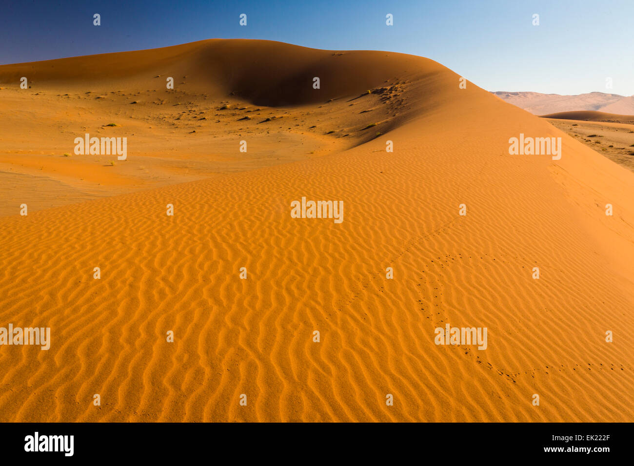 Sand dune in Namib desert near Sossusvlei in Namib-Naukluft National Park, Namibia - Stock Image