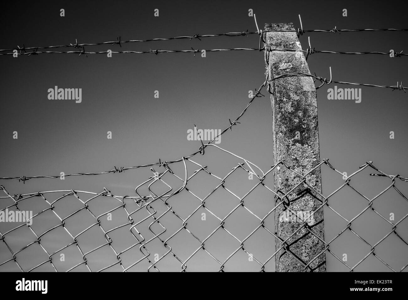 Wire netting fence in West Yorkshire. - Stock Image