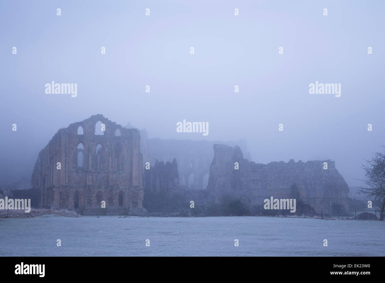 Rievaulx Abbey in the nist, North Yorkshire. - Stock Image