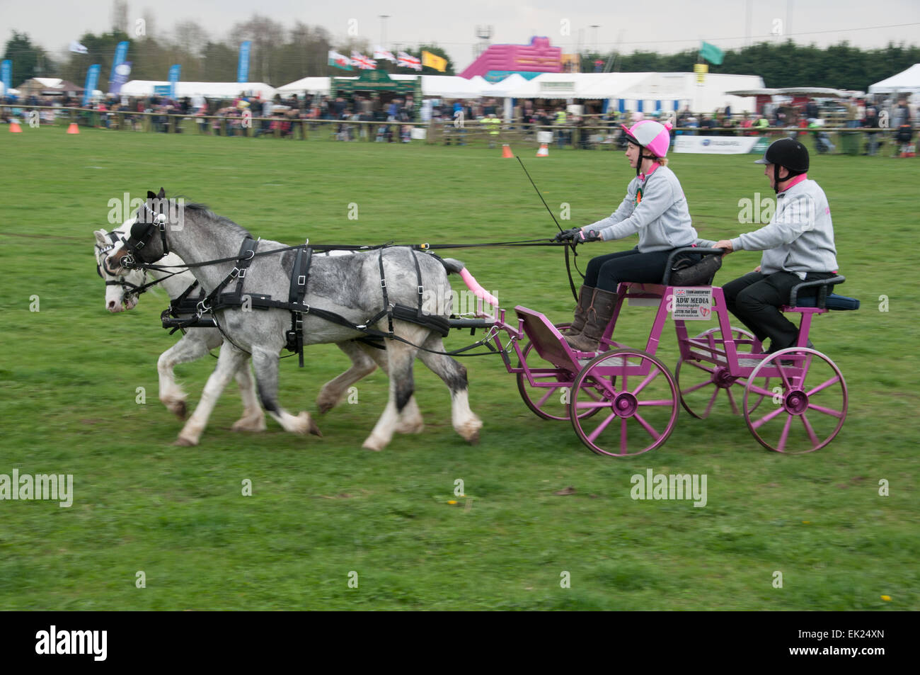 Thame, Oxon, UK. 5th April, 2015. Thame country show Day 1, Oxfordshire, 5th April 2015, picture from the annual - Stock Image