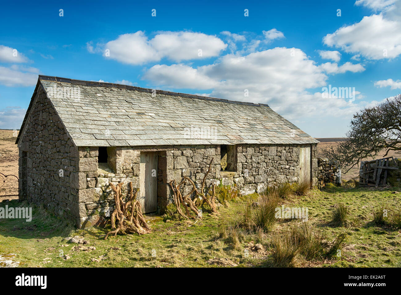 An Old Stone Barn At Garrow Tor On Bodmin Moor In Cornwall