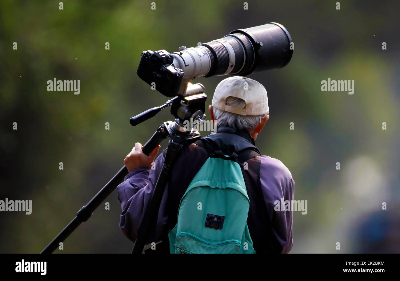 wildlife photographer with their camera equipment - Stock Image