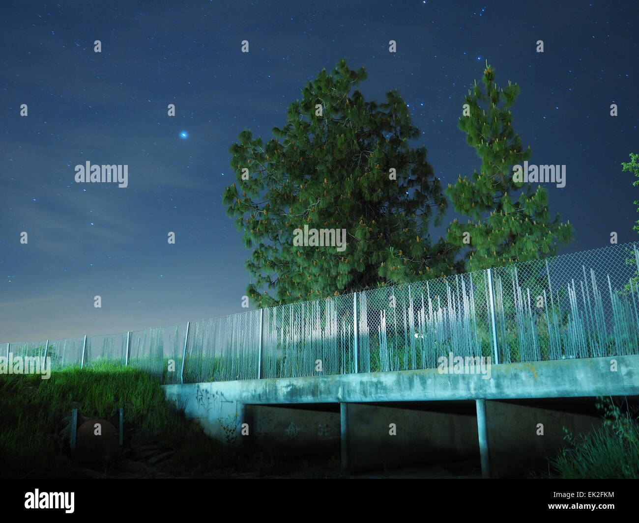 night sky with trees, stars, grass, and a culvert. - Stock Image