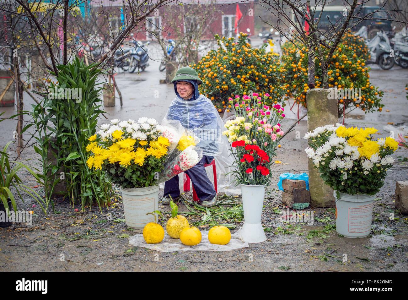Vietnamese man selling flowers on a rainy day at the market in Sapa. - Stock Image