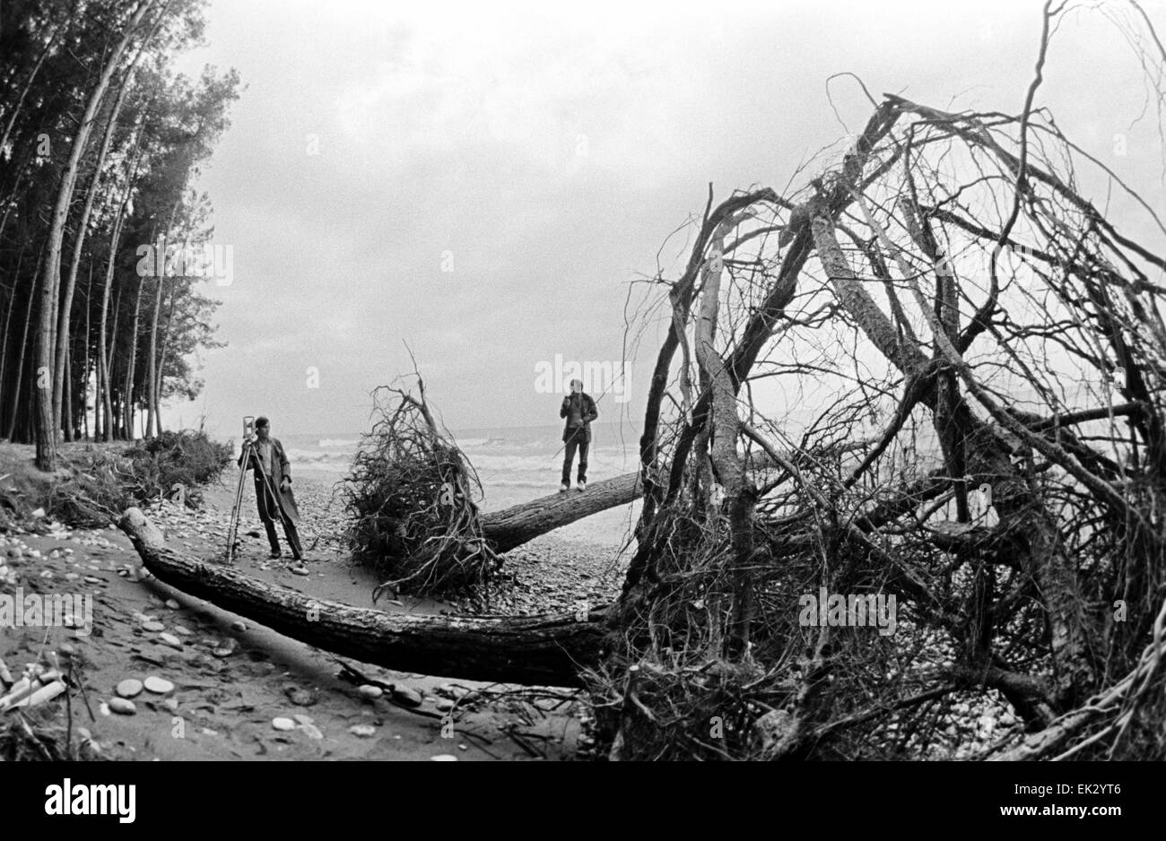 Pitsunda. Georgian SSR. USSR. Shore after storm. - Stock Image