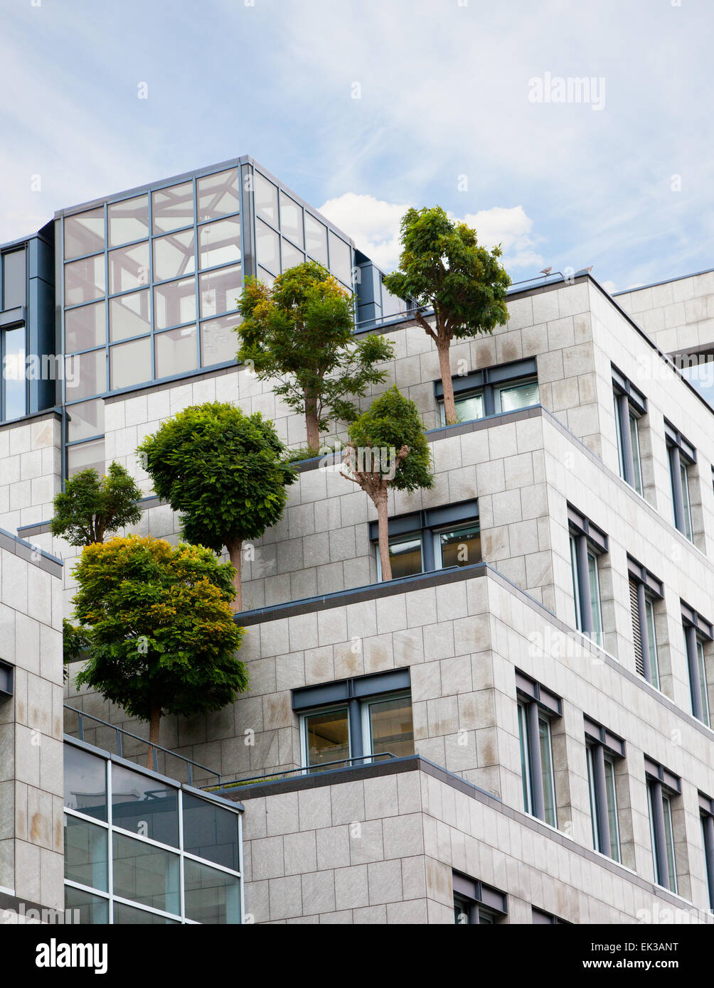 trees growing on a roof of the business center, the solution of environmental problems - Stock Image