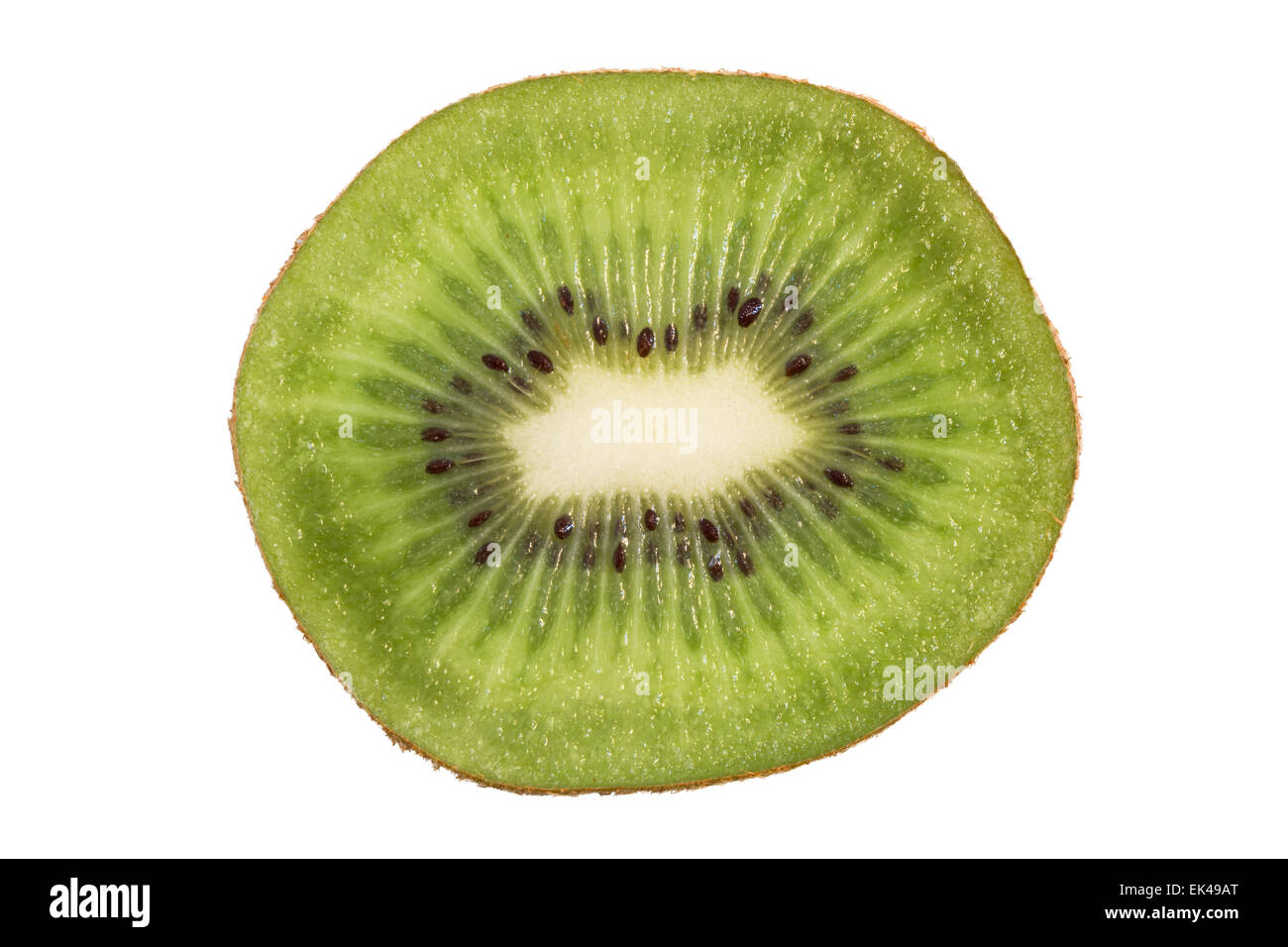 Closeup of a sliced kiwifruit (also known as kiwi or Chinese gooseberry) viewed from the front, isolated on white - Stock Image