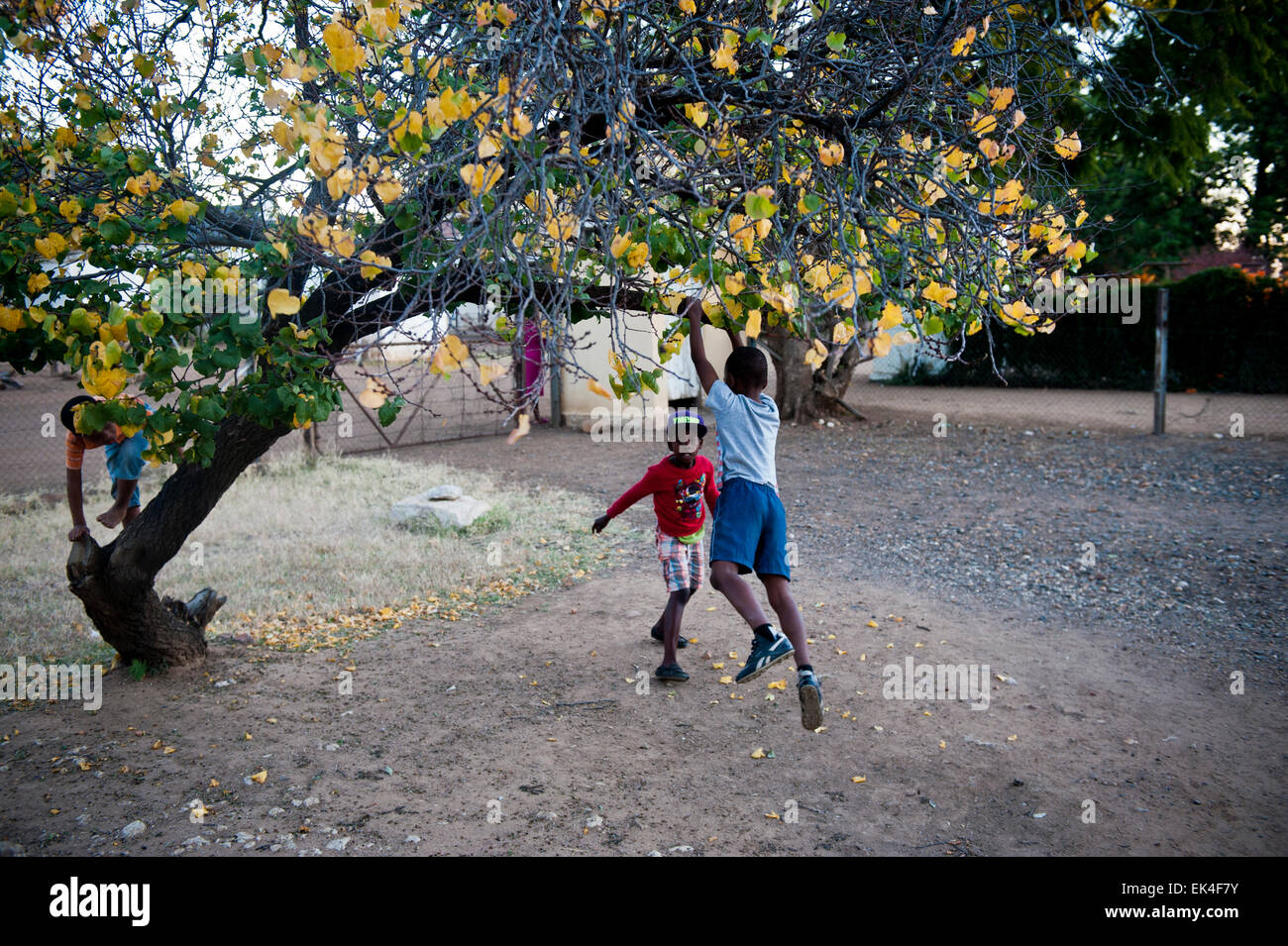 children at play in mahikeng formerly known as mafikeng - in an area called rhodes park that is along side the transnet - Stock Image