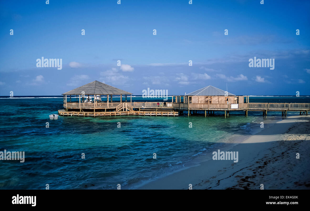 Caribbean Sea, Cayman Islands, Grand Cayman, diving club on ... on nassau caribbean, saint-martin caribbean, belize caribbean, cooper island caribbean, caicos caribbean, pennsylvania caribbean, windward islands caribbean, el salvador caribbean, eustatius caribbean, union island caribbean, monaco caribbean, anegada caribbean, virgin islands caribbean, guam caribbean, dominica island caribbean, jamaica caribbean, peter island caribbean, guatemala caribbean, chile caribbean, st barts caribbean,