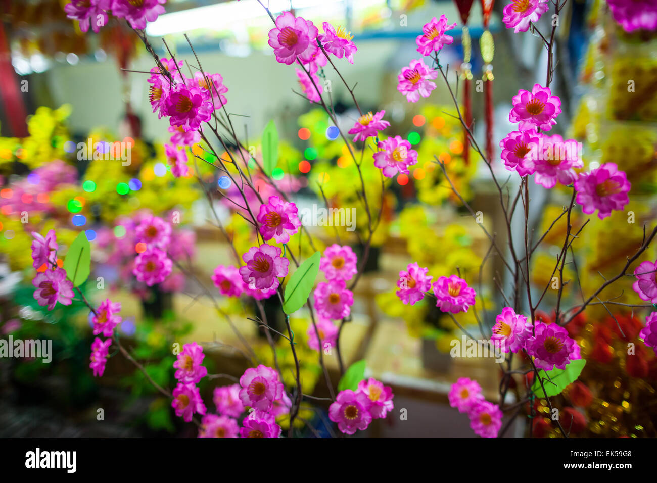 vietnamese traditional new year flowers with bokeh background wallpaper