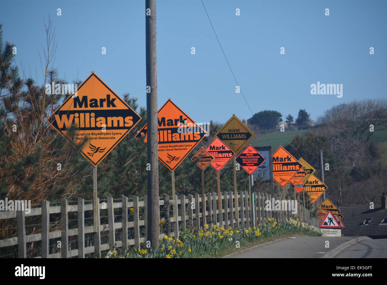 Llanon, Ceredigion, Cardiganshire, UK. 7th April, 2015. 2015 elections poster campaign has it gone to far? 15 in - Stock Image