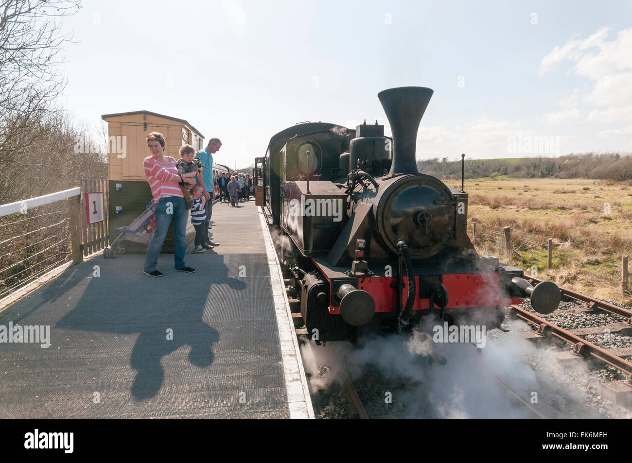 Steam train at Downpatrick Railway Preservation Society - Stock Image