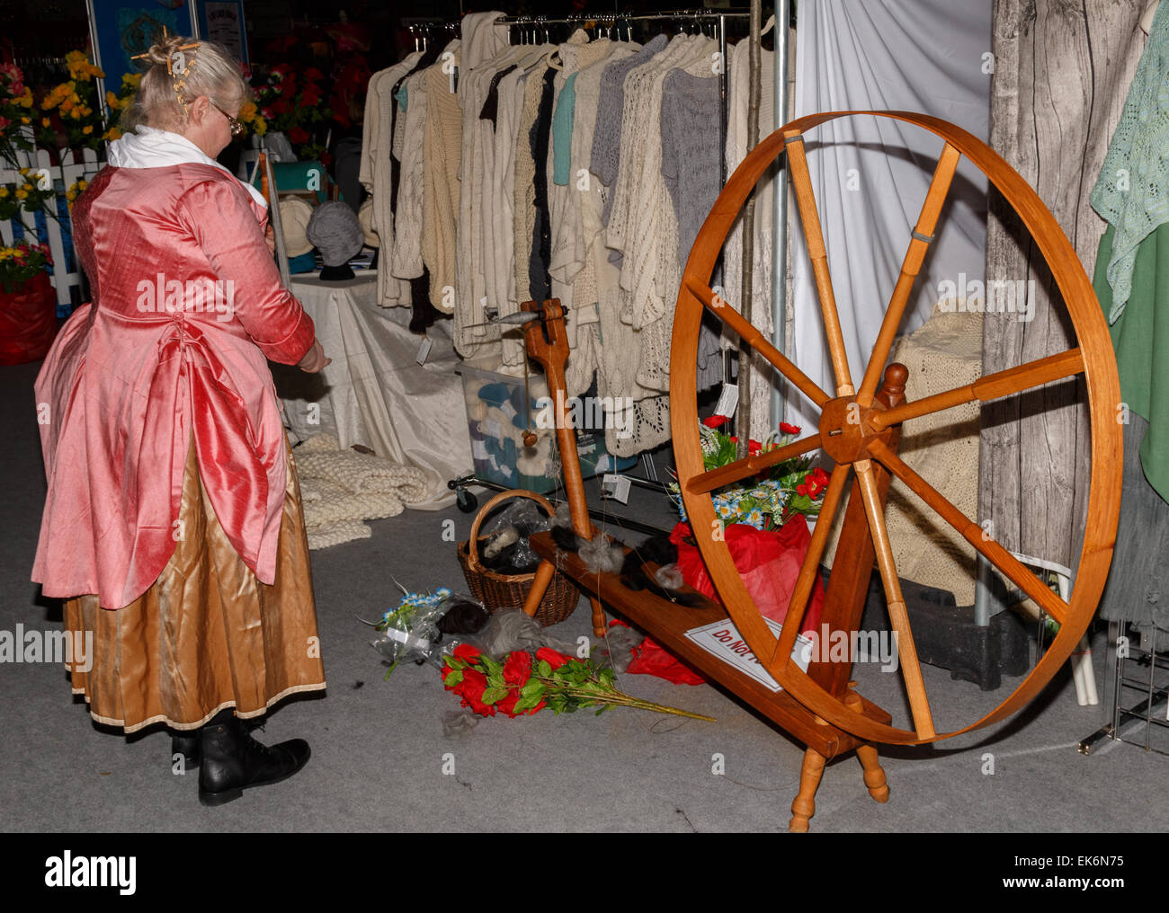Woman (50-60 years) spinner in traditional costume using a hand driven spinning wheel to spin alpaca yarn - Stock Image