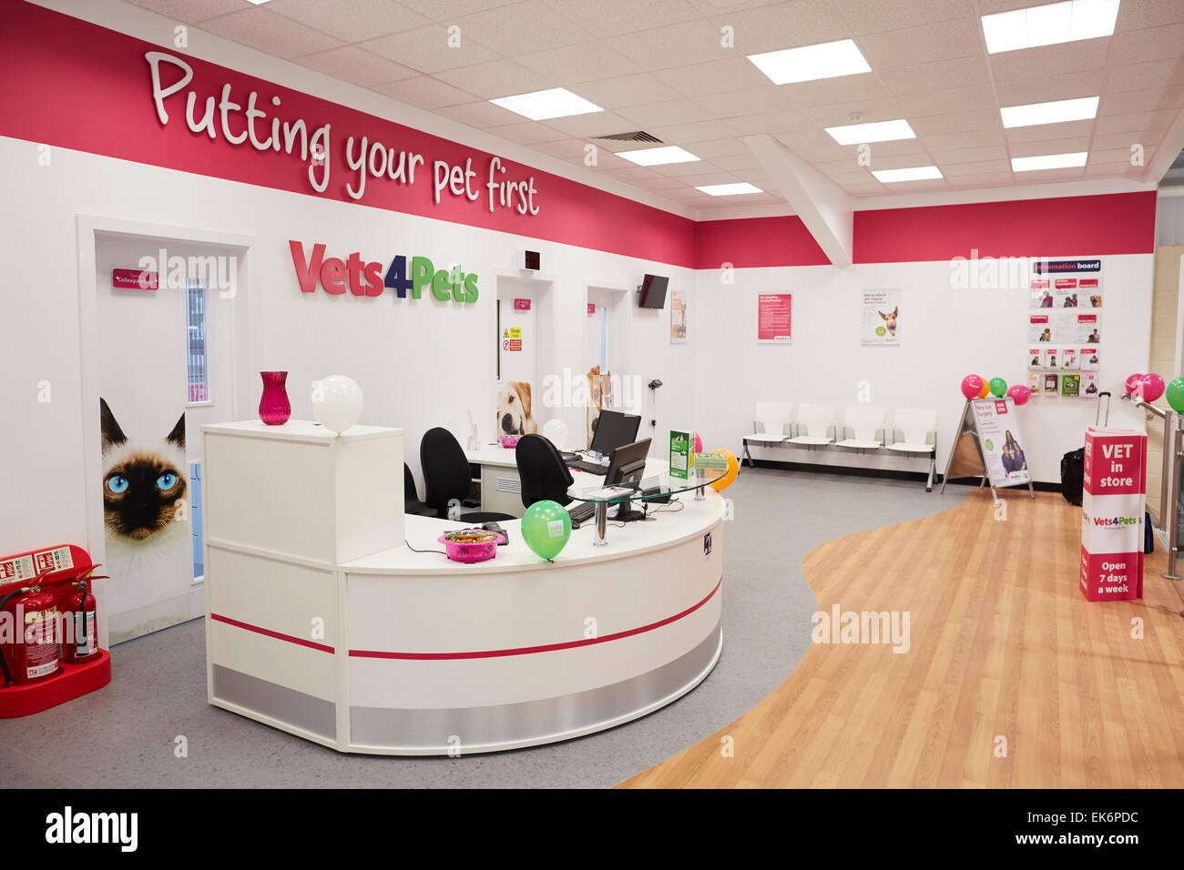 Pets at Home Widnes add a groom room and Vets 4 Pets to their store.  Pictured Vets 4 Pets reception - Stock Image