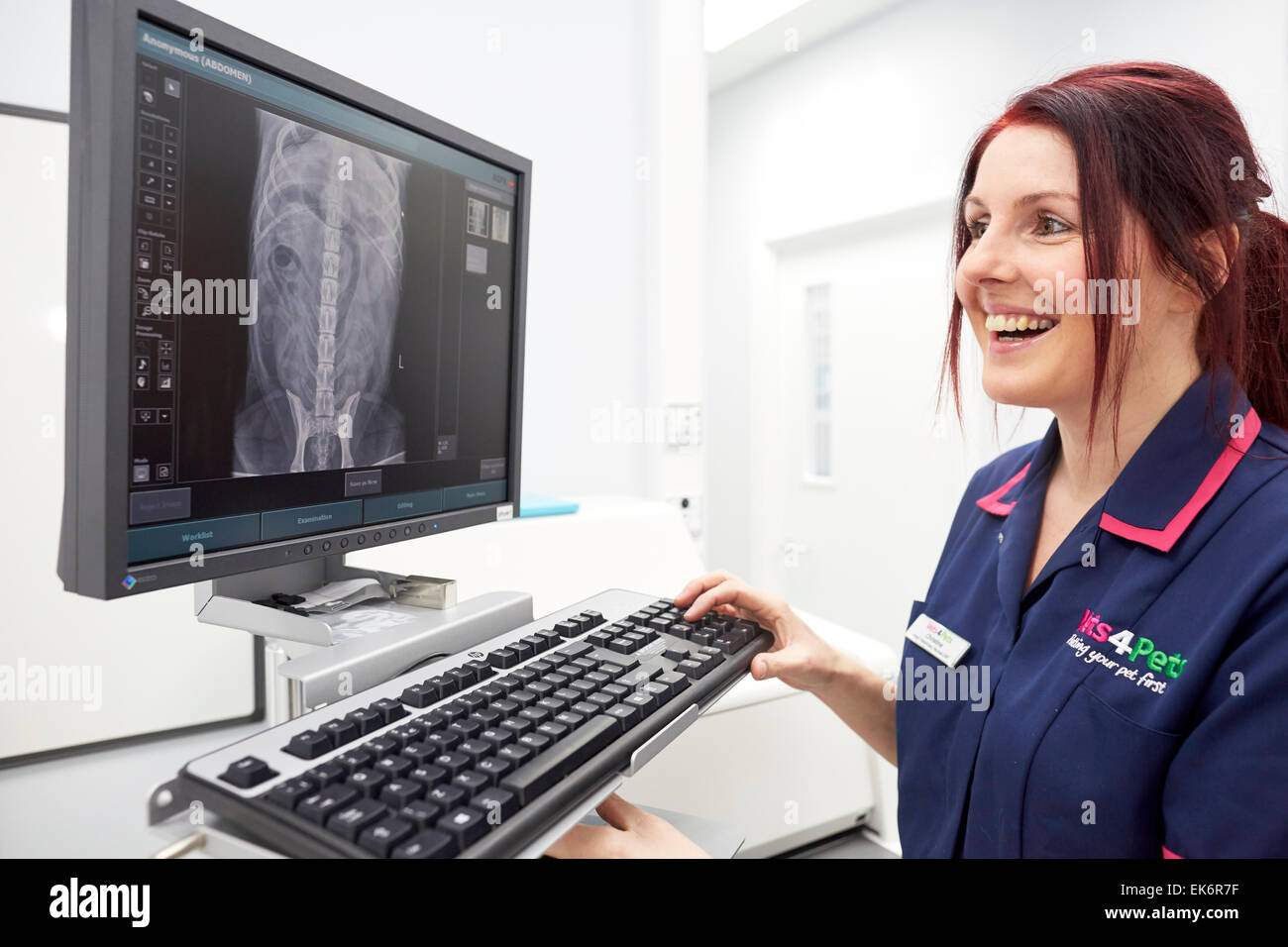 Pets at Home widnes add a groom room and Vets 4 Pets to their store. Pictured Nurse  at the x-ray machine - Stock Image
