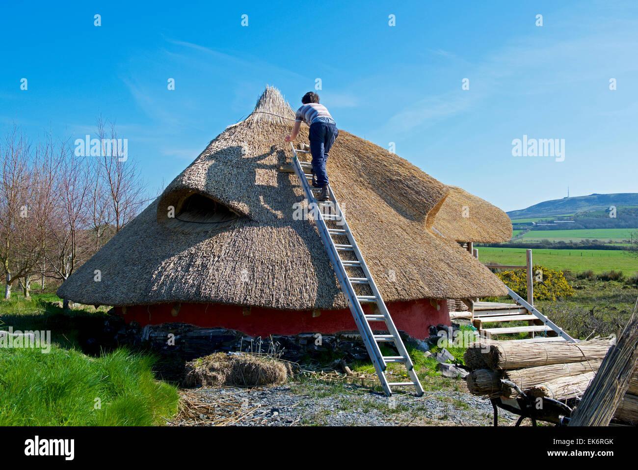 Thatching a roundhouse at the Felin Uchaf eco-centre, Rhoshirwaun. near Pwllheli, Gwynedd, North Wales - Stock Image