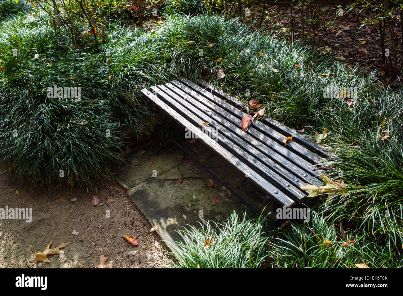 Bench, Bayou Bend gardens & home, Museum of Fine Arts Houston, house museum for American decorative arts and - Stock Image