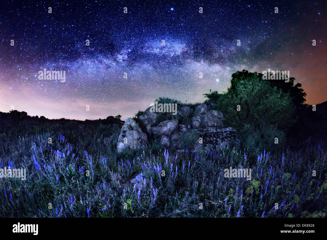 Milky way beautiful summer night sky with stars rocks and flowers beautiful summer night sky with stars rocks and flowers in ukraine izmirmasajfo