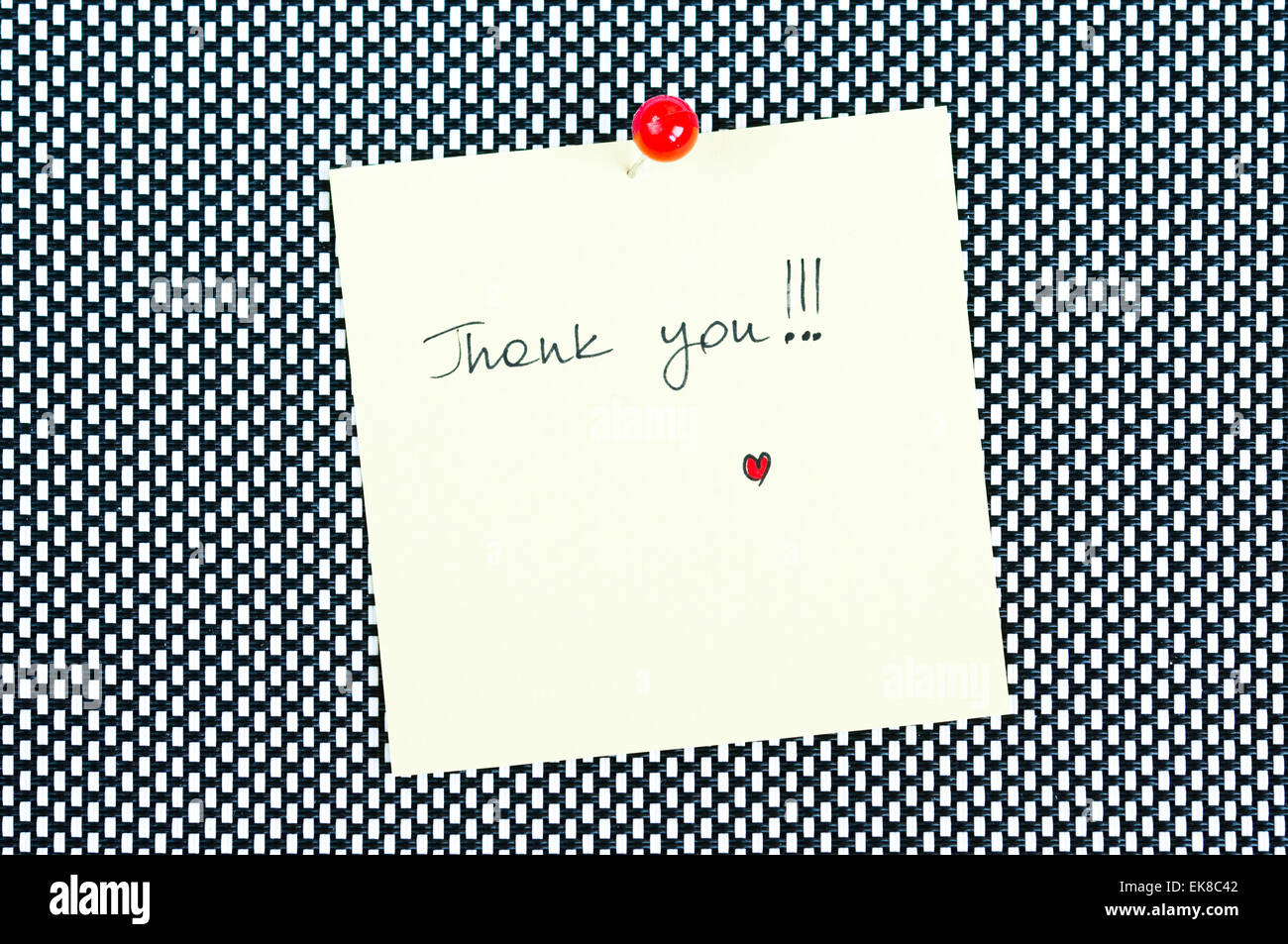 Thank You - Stock Image