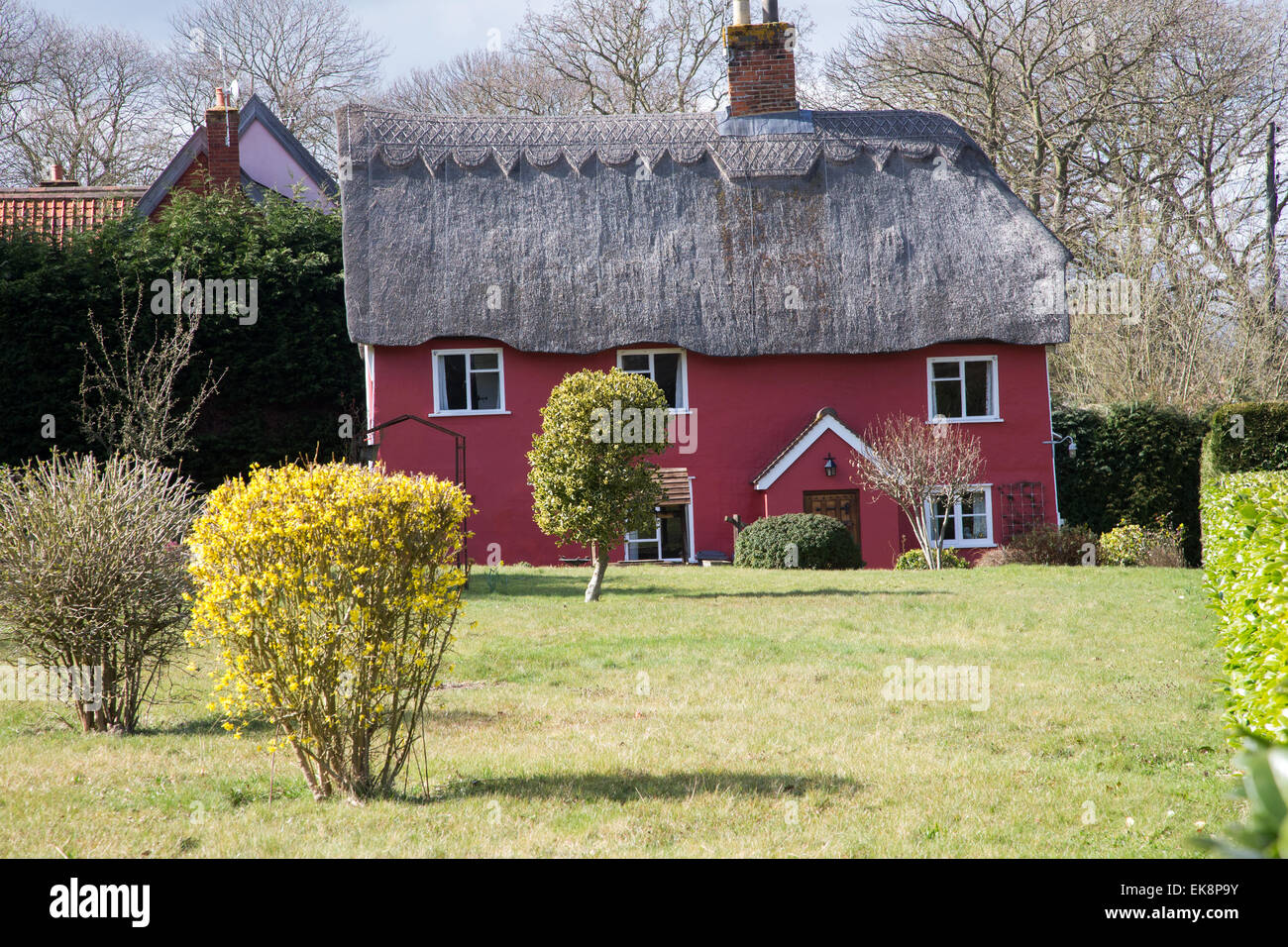 Classic picturesque red thatched country cottage in rural England with a lawn - Stock Image