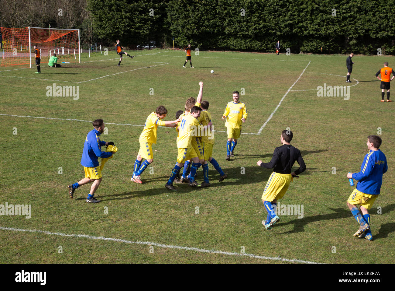 Football players celebrate a goal in an amateur local game,Suffolk - Stock Image