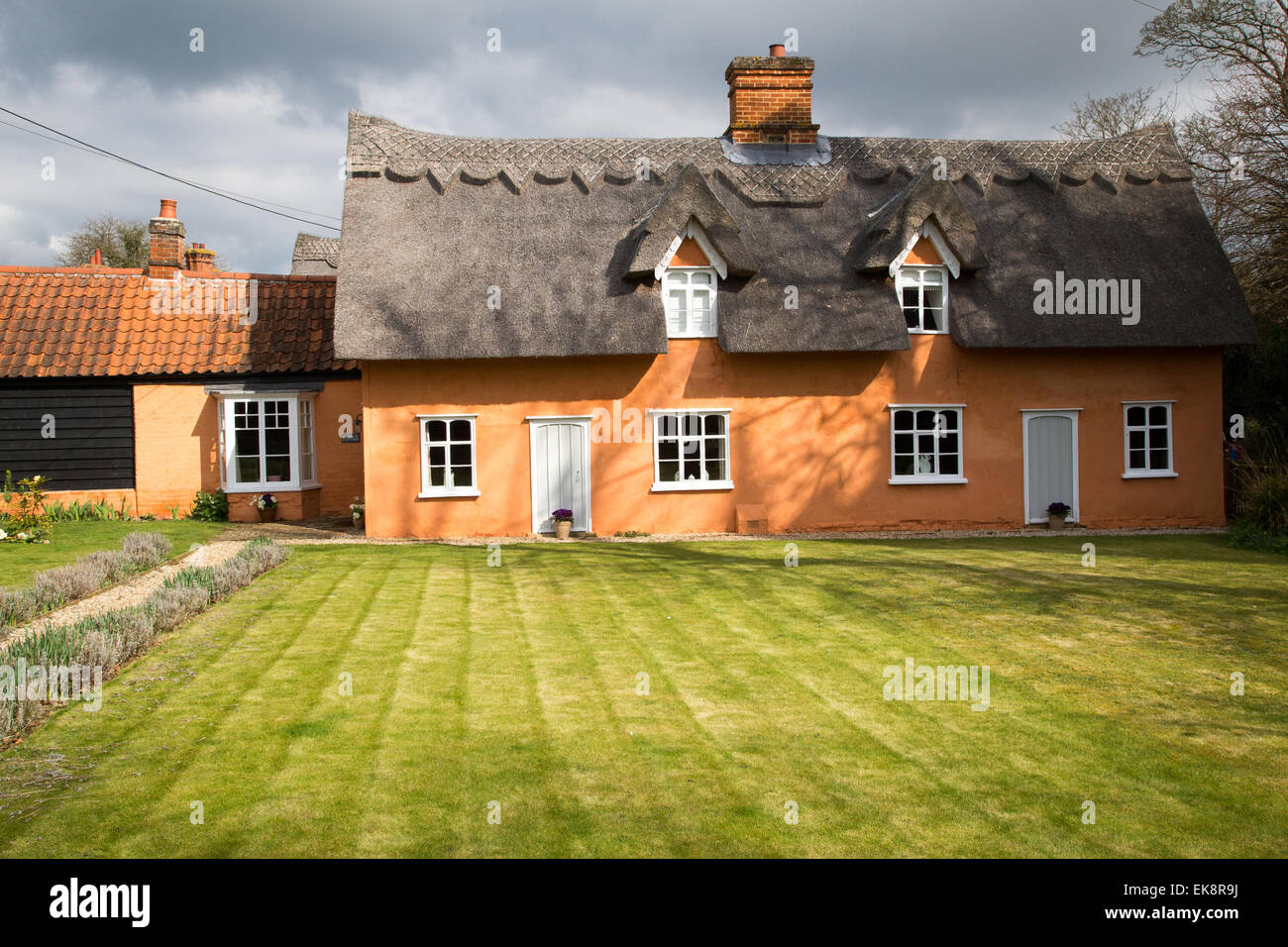 Classic picturesque orange thatched country cottage in rural England with a lawn - Stock Image